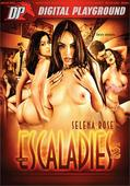 Best Ethnic-Themed Release - Latin                        Escaladies         Digital Playground